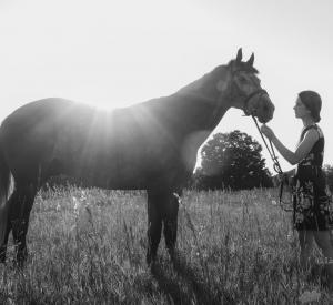 Equine_photographer-7512